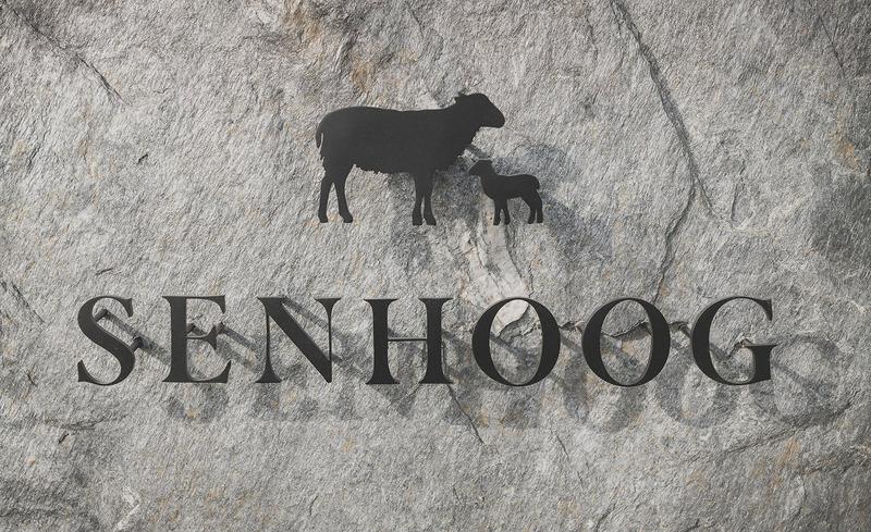 senhoog-bergwaertsgeist-logo