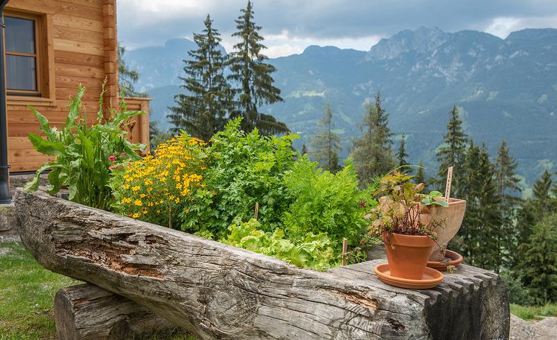Kräuter- & Gemüsegarten Prenner Alm - Urlaub im Chalet Schladming