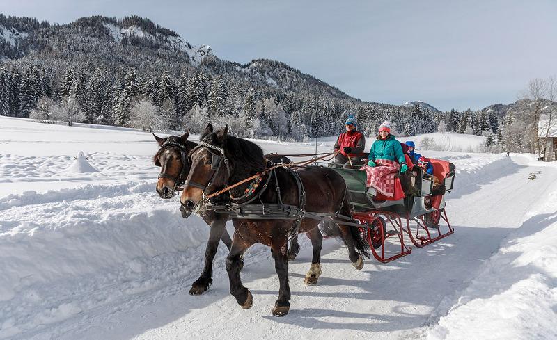 pferdeschlitten-winterurlaub