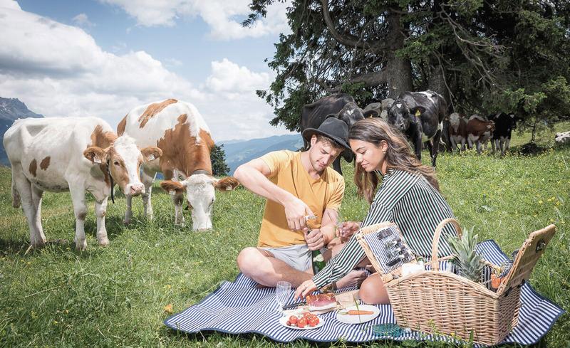 picknick-alm