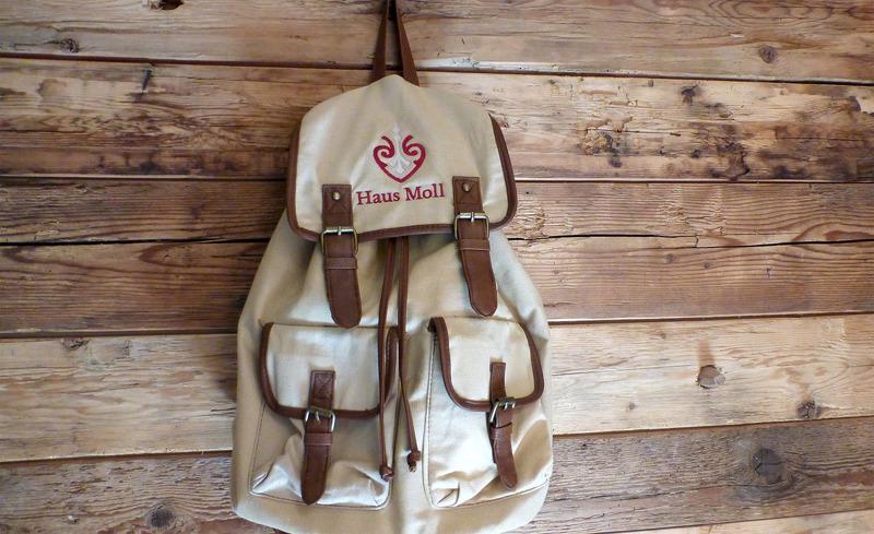 Designvoller Rucksack der Amlhütten Moll