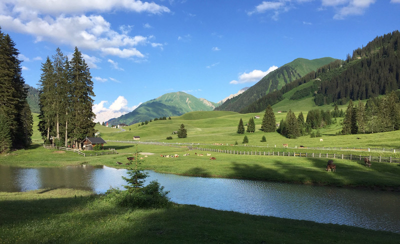 sommer-alm