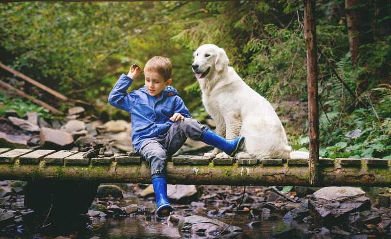 Hunde sind Herzlich Willkommen im AAdla Walser Chalet in Vorarlberg