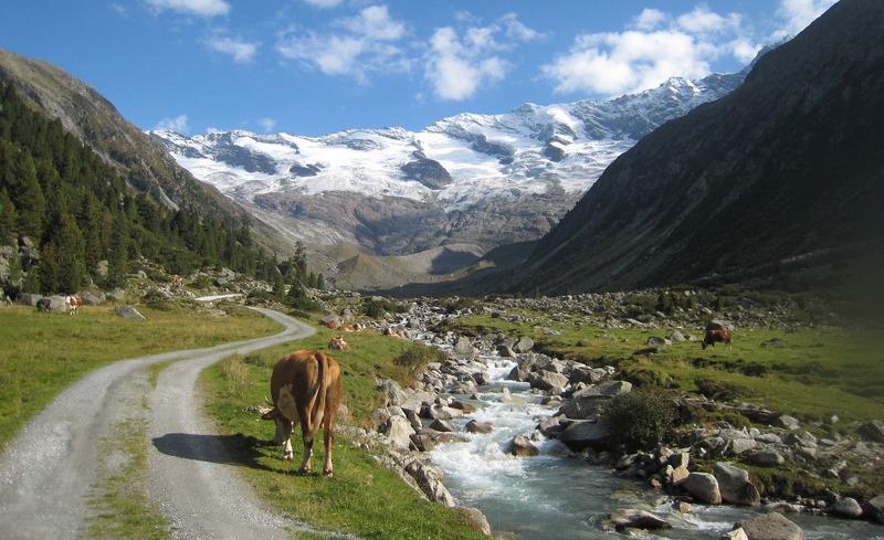 Sommerurlaub im wunderschönen Salzburger Land