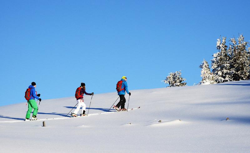 alpenparks-hochkoenig-19