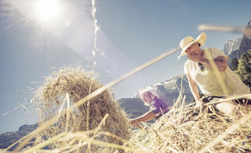Sommer in den Tiroler Bergen - Familienurlaub im Almhof Roswitha