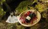 Romantik im Bergdorf- ein unvergesslicher Urlaub im Chalet