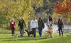 Familienurlaub mit Hunden im Landgut Moserhof