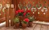Blumen & Kerzen - Romantikurlaub im Chalet in der Steiermark
