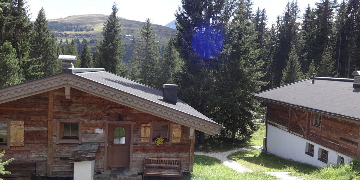 Almsommer im wunderschönen Salzburger Land
